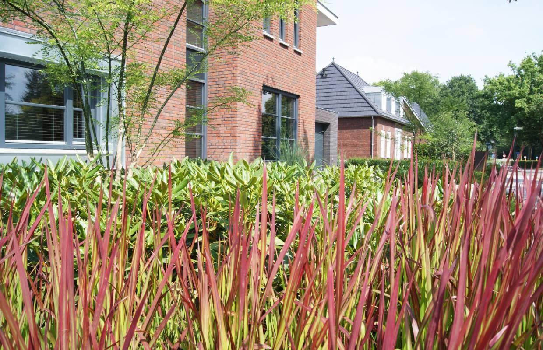 Verwonderend Onderhoudsvriendelijke tuin – Van Sleeuwen Hoveniers WQ-01