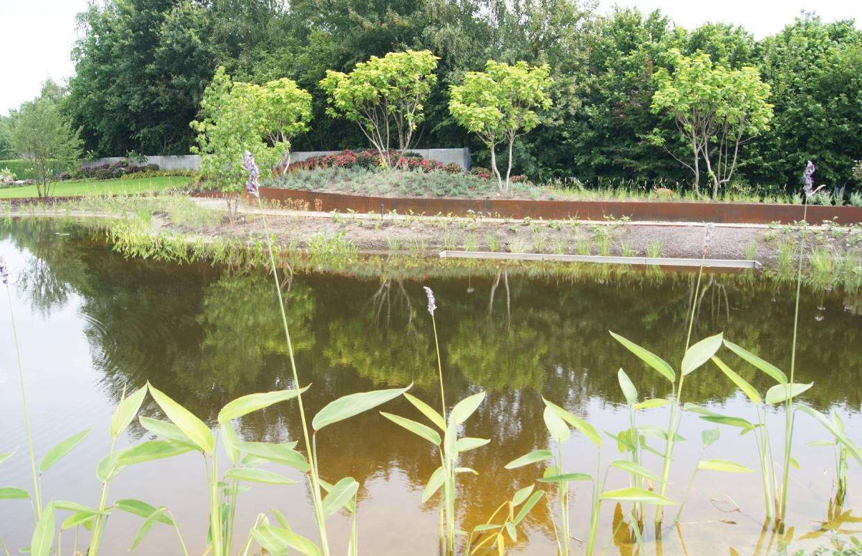 Welp Tuin met natuurvijver – Van Sleeuwen Hoveniers OA-76